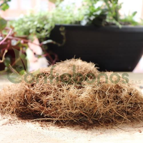 fibra-corteza-coco